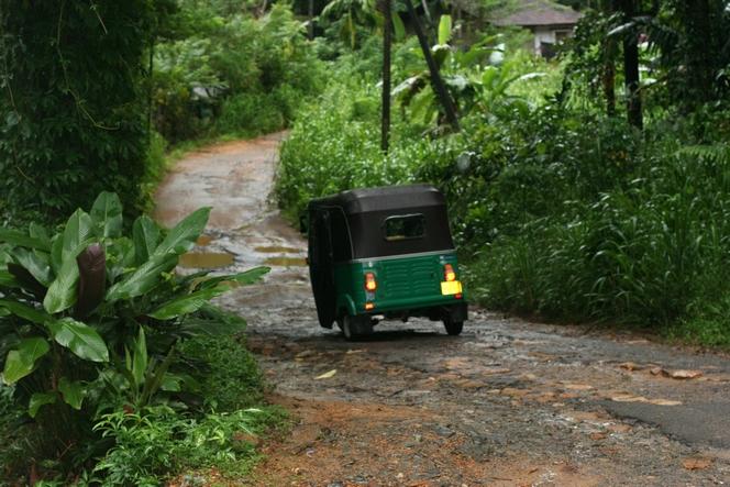 In a tuk-tuk through the jungle of Sri Lanka