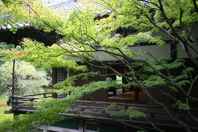 The Shoren-In temple in Kyoto: a haven of peace