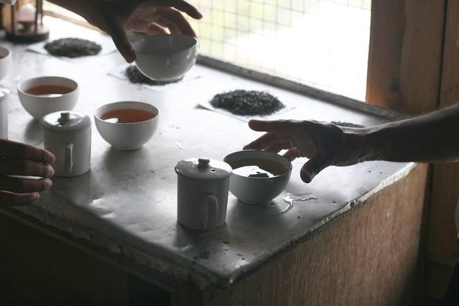 Tea tasting: a special moment