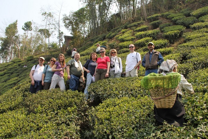 Eight students of the Tea School in Darjeeling