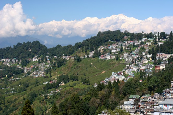 Darjeeling: the dream and the reality