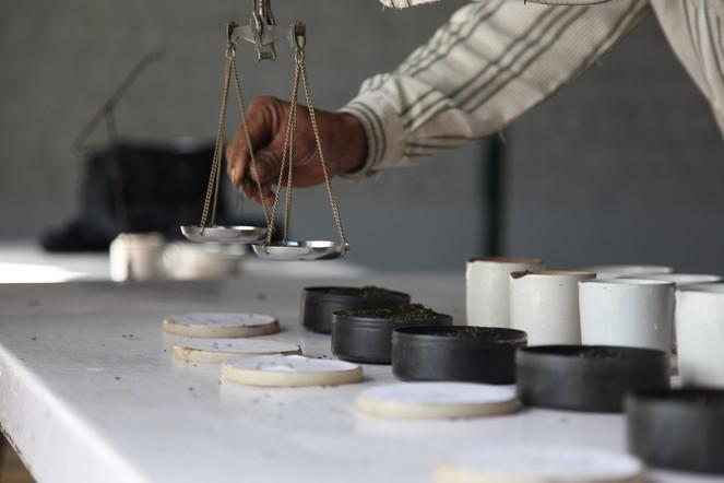 Measuring the tea carefully for tastings