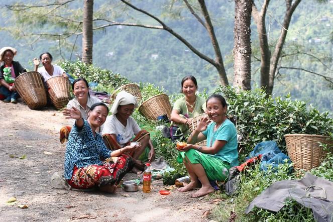 Taking a break on the tea plantations