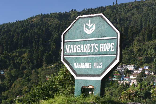 A magnificent tea from Margaret's Hope
