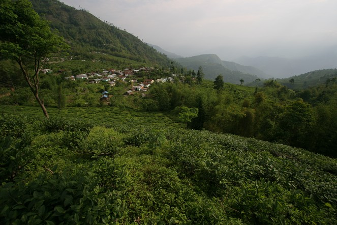 Political turmoil in Darjeeling