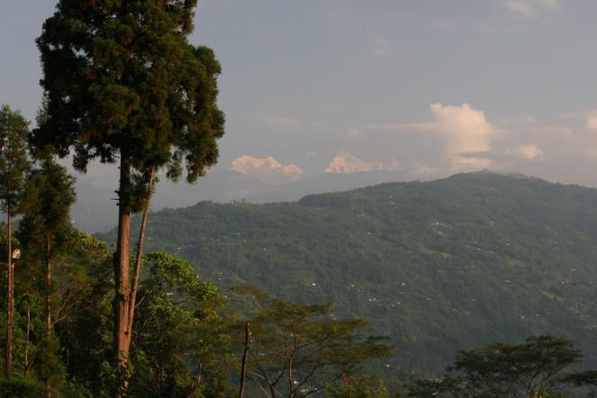 Autumn landscape in Darjeeling