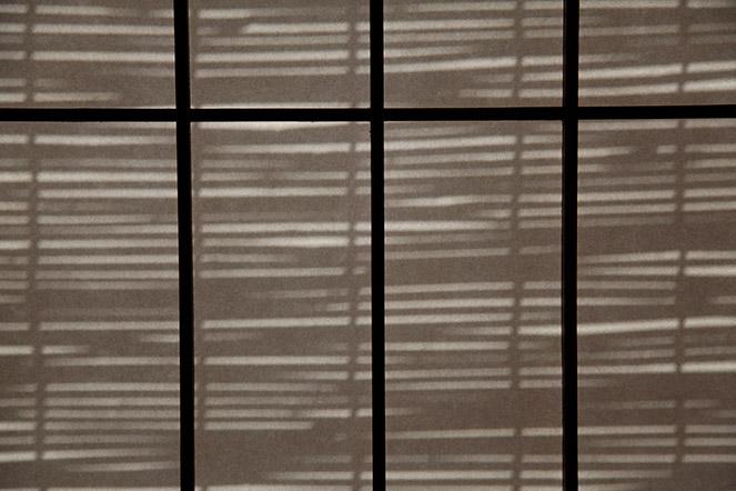 Japanese shadows