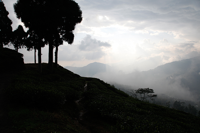 Under the Himalayan clouds