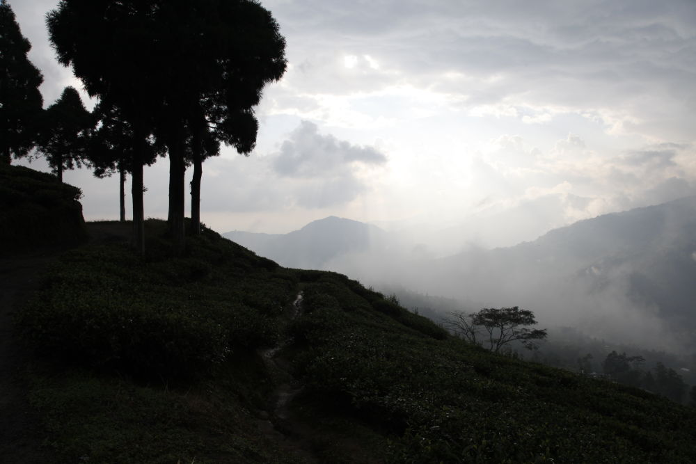 Waiting for rain in Darjeeling