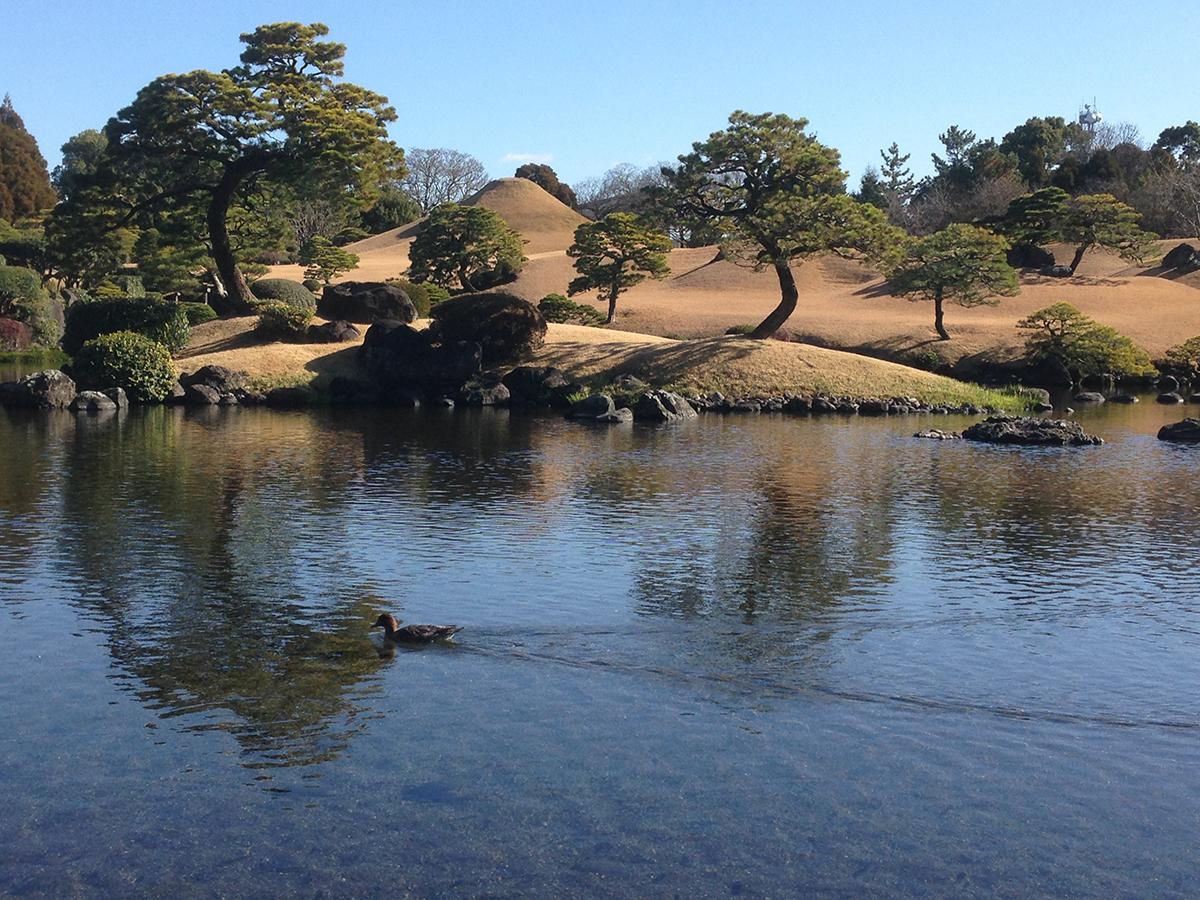 The Suizen-ji garden in Kumamoto