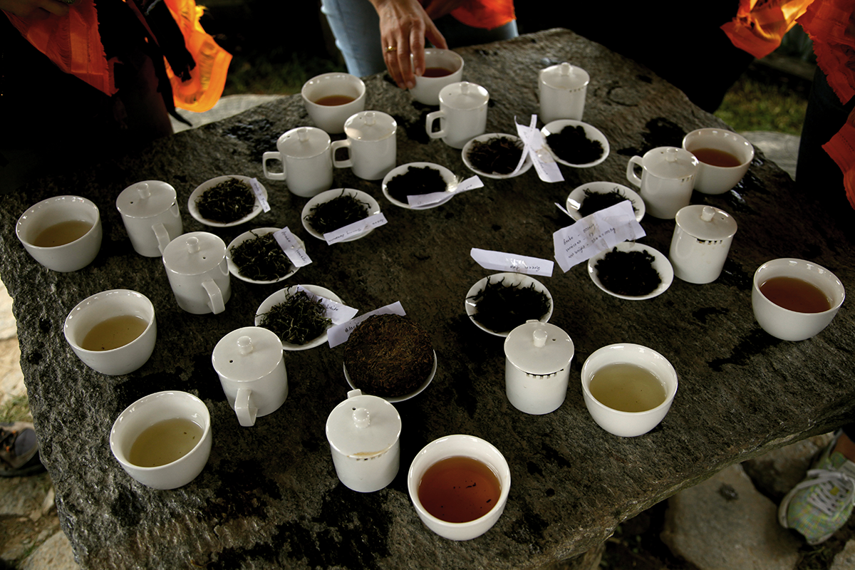 Tasting tea outdoors