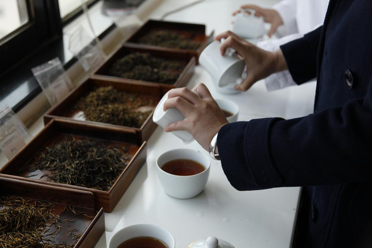 About premium teas