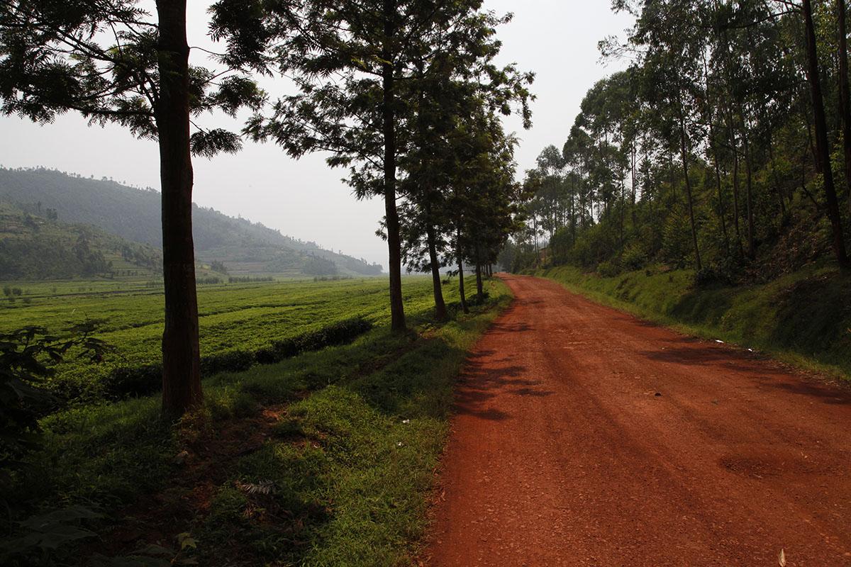 Heading to Rwanda