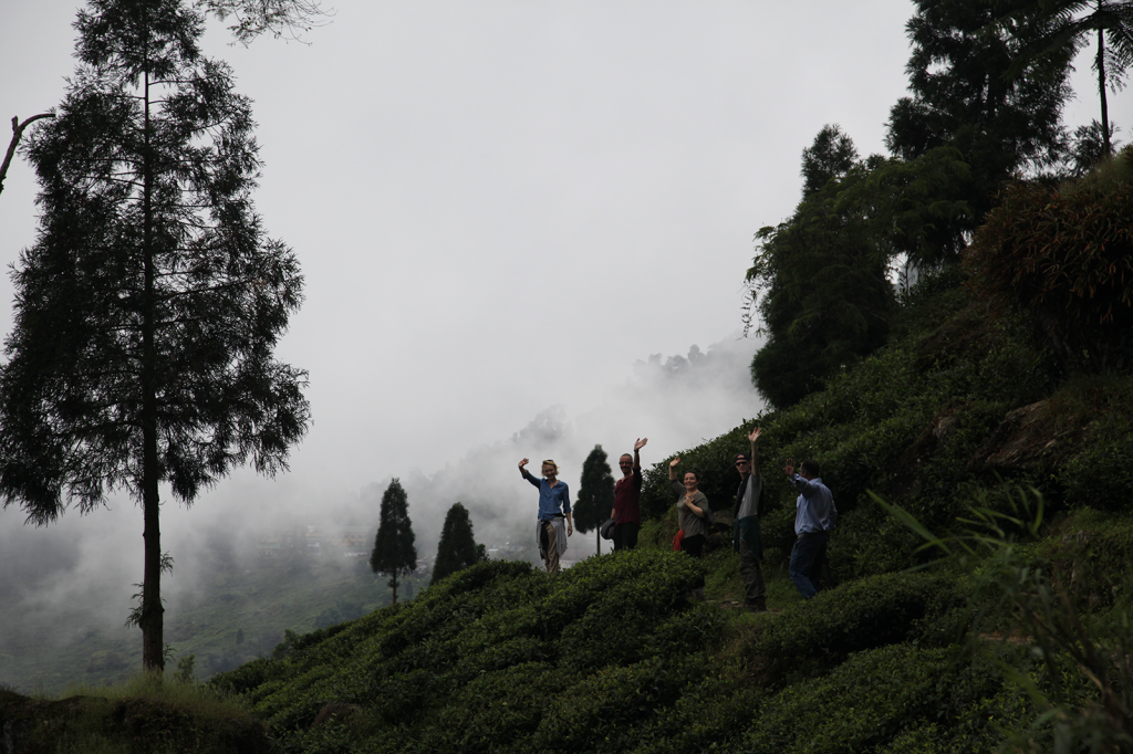 Hello from Darjeeling