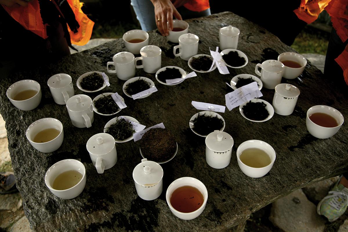 Tasting tea outdoors