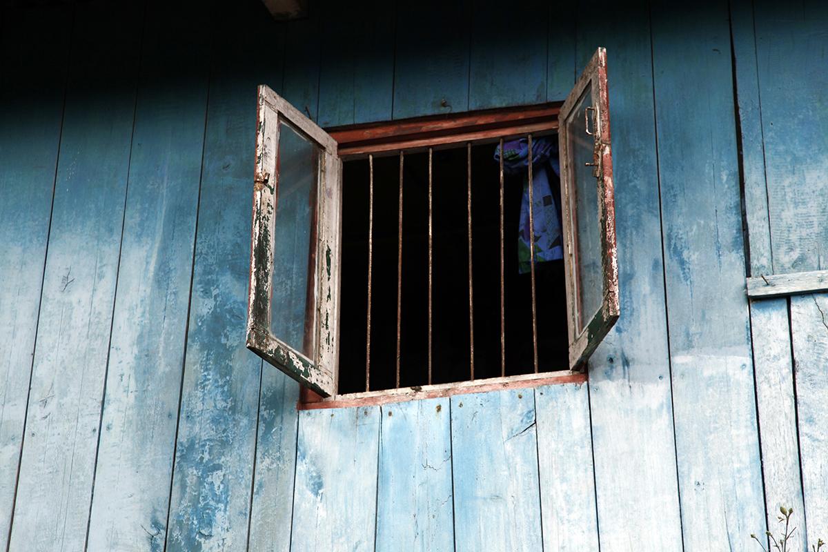 The world through the window