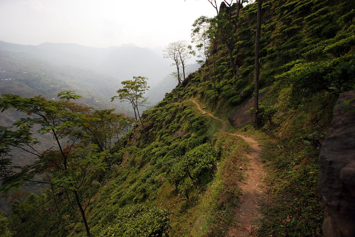 Around the mountainside